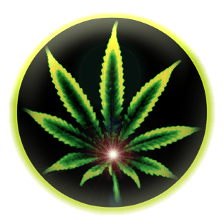 amsterdam-cannabis-ministry_84578926