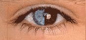 blue-eye-brown-eye-3346060703_41f22c32b3